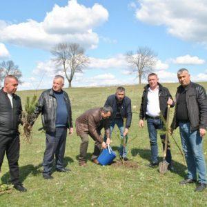 2 000 нови дръвчета засадиха в община Никола Козлево