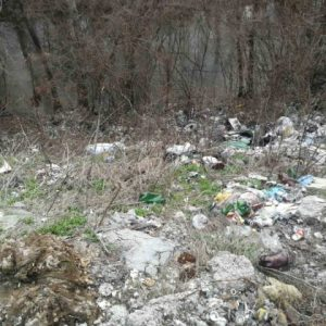 Екоинспекцията разпореди почистване на отпадъците в землището на село Сушина