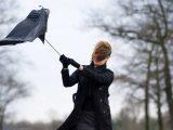 Жълт код! Вятър с пориви до 24 метра в секунда и дъжд в петък