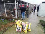 Коледни подаръци получиха обитателите на търговищкия приют за животни