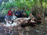 Пореден рекорд: Млад ловец от Шумен отстреля 240-килограмов глиган