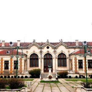 "Три международни фестивала организира читалище ""Добри Войников"""